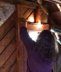 Camille Wells investigating rafters in the attic.